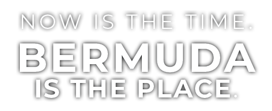 Now is the time. Bermuda is the place. logo overlay