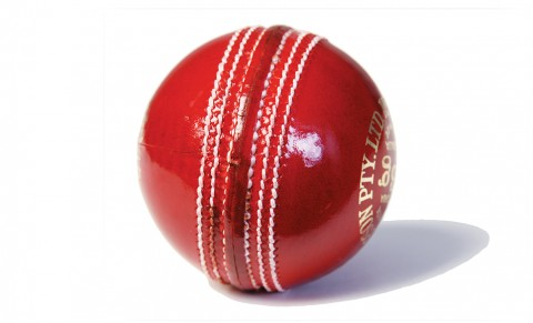 Cricket ball in Bermuda