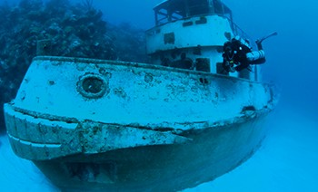 Bermuda's underwater worlds attract divers