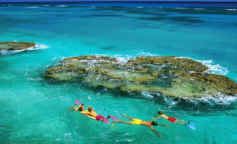 Snorkeling along the shoreline of Bermuda