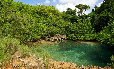 Blue Hole Park in the Walsingham Nature Reserve, Bermuda