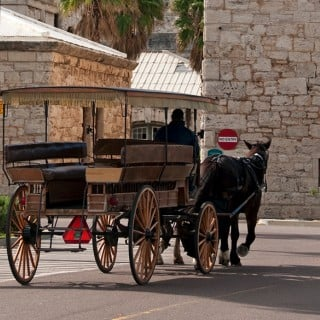 Carriage Ride in Bermuda