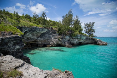 The shoreline cliffs and deep water at Admiralty House Park provide a perfect venue for cliff jumping