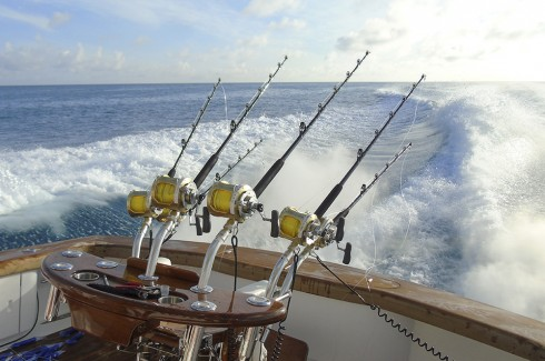 Cast a line in the turquoise waters of Bermuda