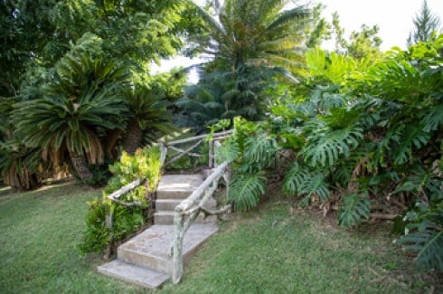 A stone stairway in lush Palm Grove Gardens