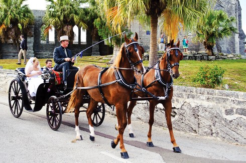 A bride and groom in a horse-drawn carriage