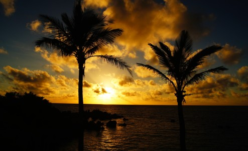 Blackbeard's Hideout Sunset - Located at the far Eastern tip of Bermuda, Blackbeard's Hideout has an open-air island vibe mixed with the flavors and atmosphere of an island-style beach bar. However, if you come for the day you stay for the sunset!...